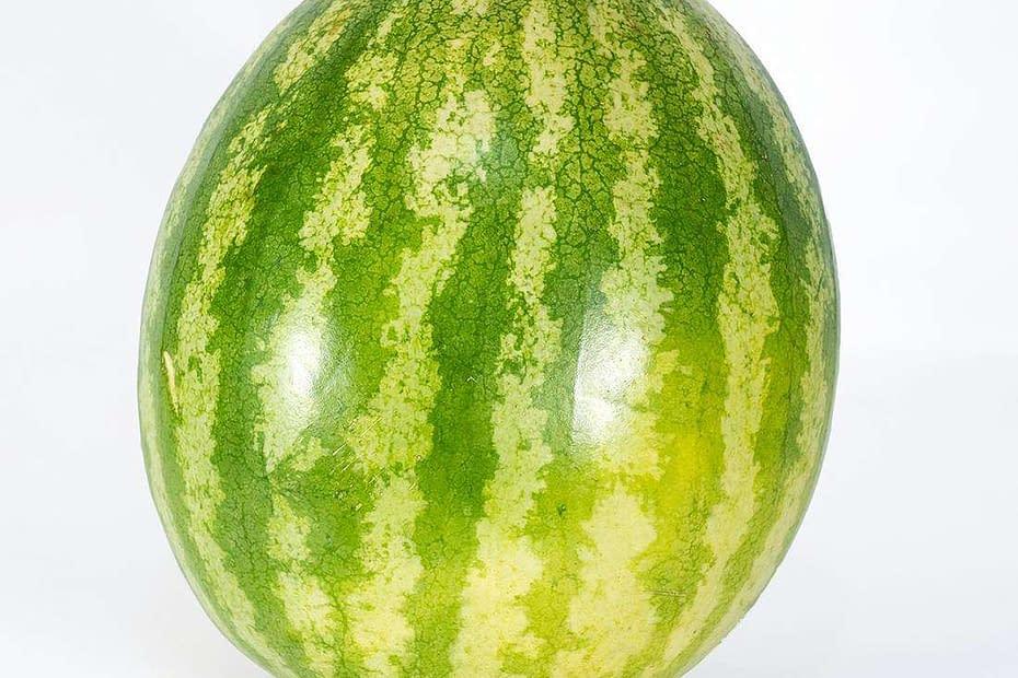 Melone in giardino